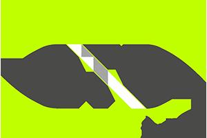 DTPinc Logo